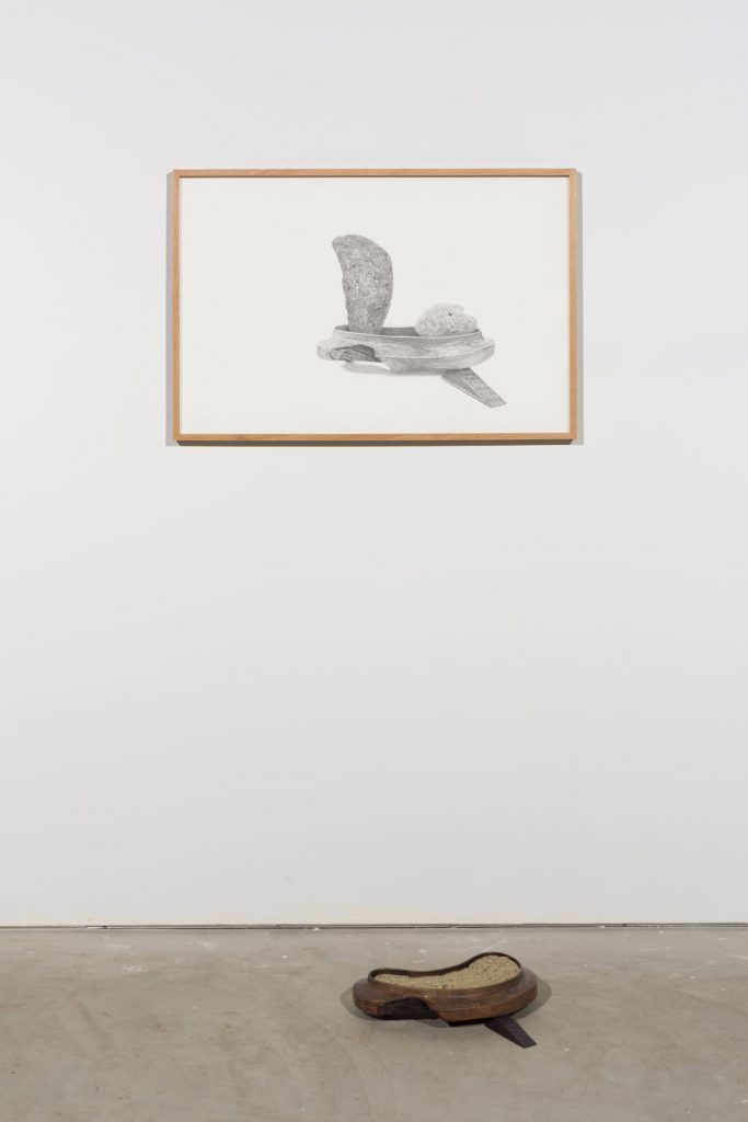 Whitney Biennial, Whitney Biennial 2019, eastern artists, diversity in art, American art, contemporary art, New York art guide, what to see in New York, art exhibitions, New York museums, Whitney Museum of American art, American artists, Gala Porras-Kim